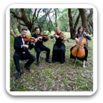 Sydney String Quartets 302